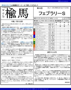 web楡馬 通巻350号 フェブラリーステークス号